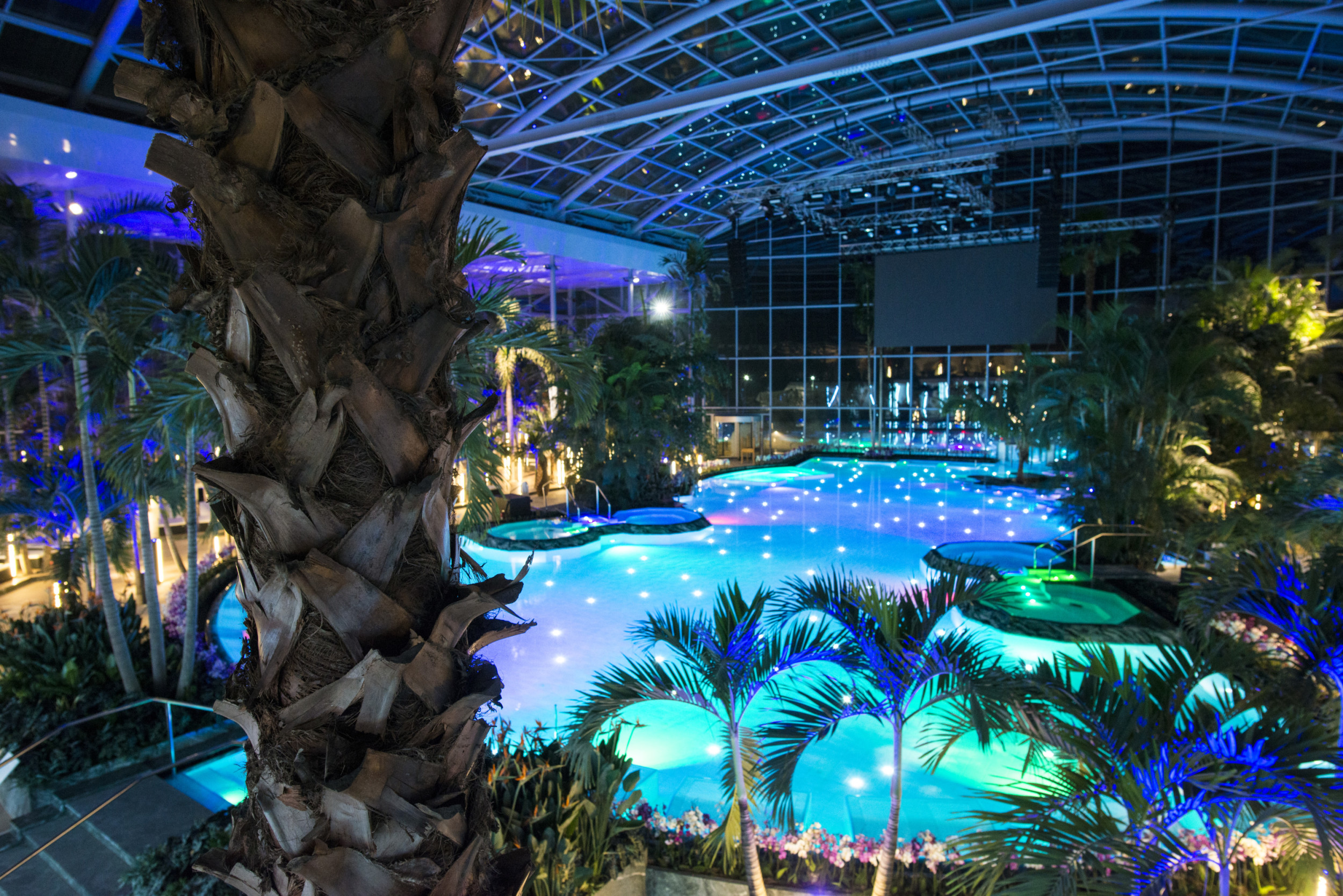 therme bucharest palm